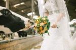 Bruiloft Peter&Annette (122)