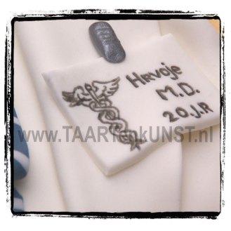 geneeskunde-taart-2