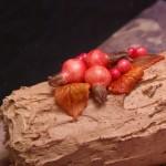 boomstam boomstronk taart herfsttaart buche de noel yule log