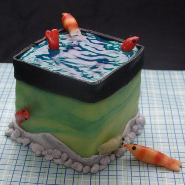 aquariumtaart