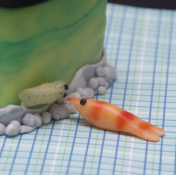 aquarium taartje