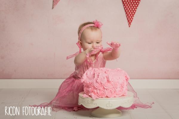 smash the cake photoshoot