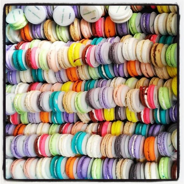 schiphol transavia macarons
